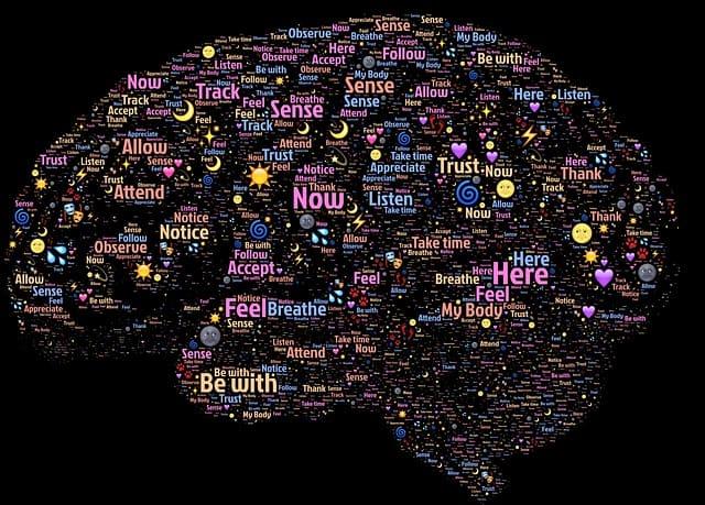 Actief luisteren - brein