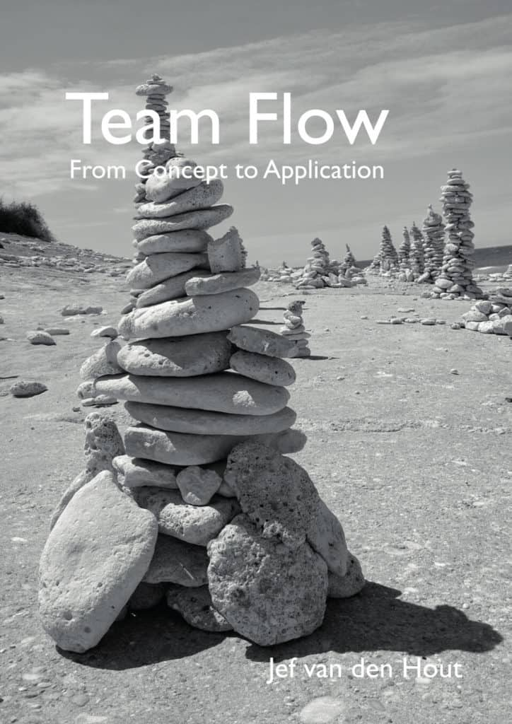 Team Flow From Concept to Application - Jef van den Hout - cover