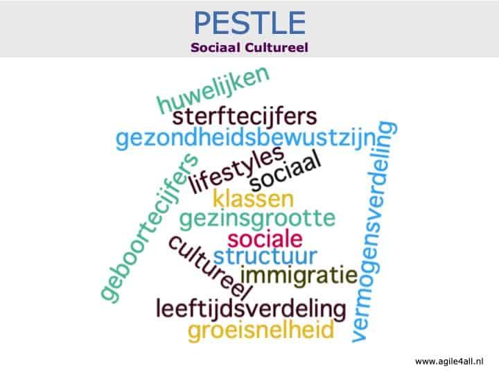 PESTLE - sociaal cultureel - woordwolk