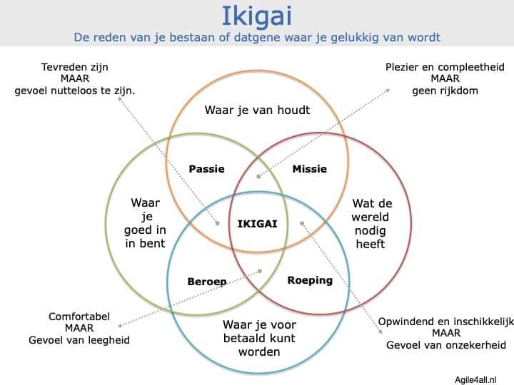 Ikigai - De reden van je bestaan of datgene waar je gelukkig van wordt