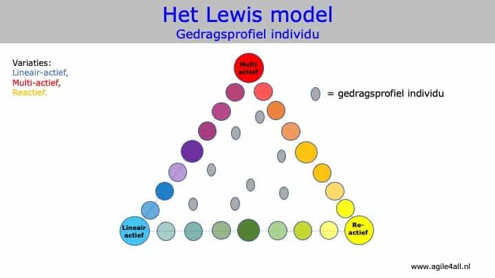 Het Lewis model - Gedragsprofiel individu